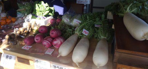 コマキ農園の野菜